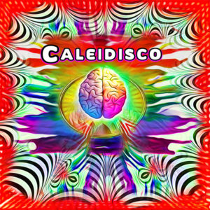 caleidisco-infinite-variations-of-black-and-white-300x300